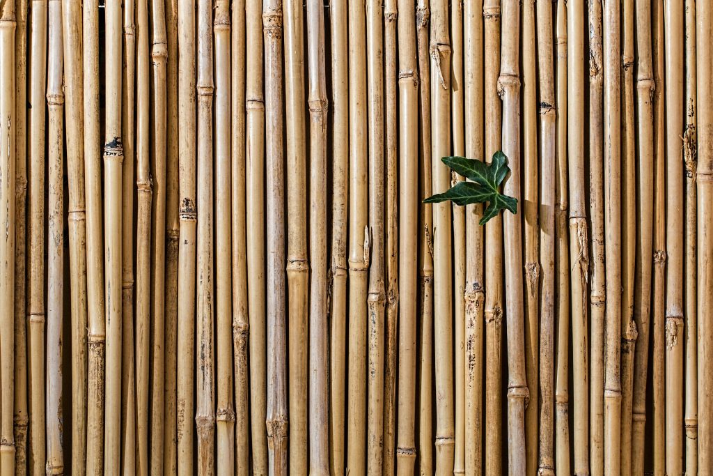 Barrière-en-bambou